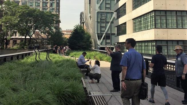 Image showing David Walking the High Line