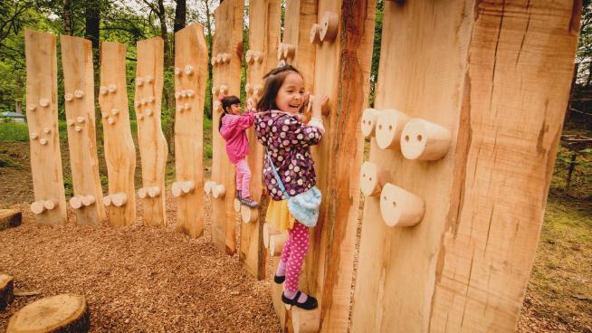 Children climbing wooden wall during Wild wood weekend, image Jim Holden