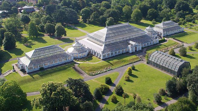Aerial view of the Temperate House