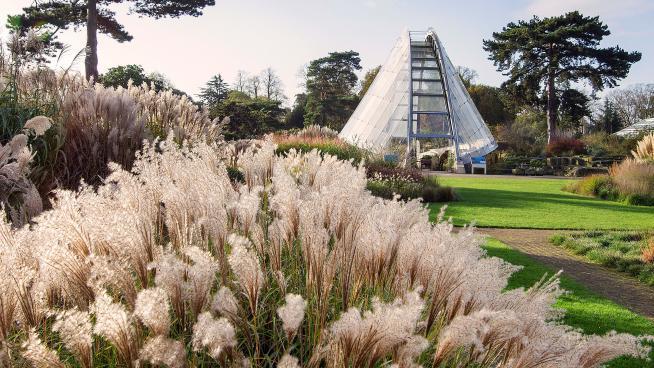 The Davies Alpine House at Kew