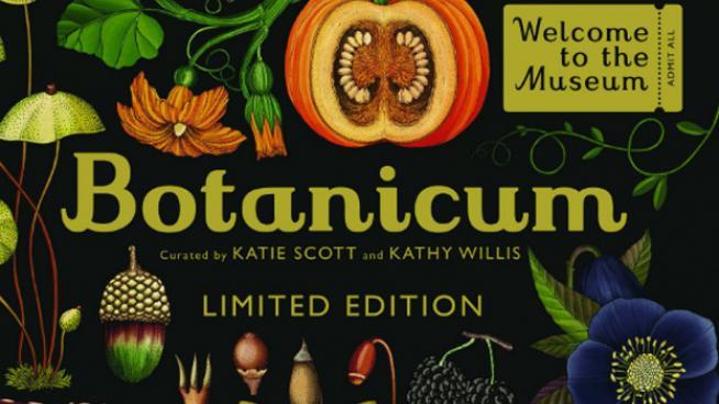 Botanicum: captivating the beauty of the plant kingdom in illustrations