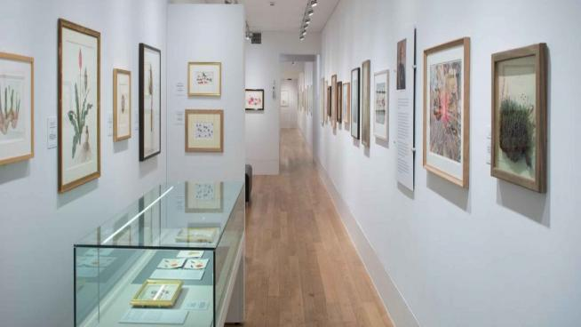 Shirley Shirwood gallery, interiror, Kew Gardens