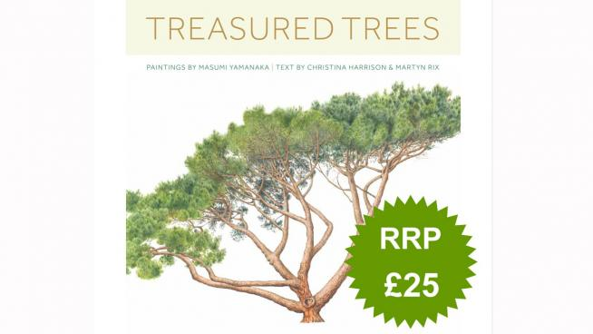 Japanese artist Masumi Yamanaka's illustrations of the oldest and finest trees growing at Kew