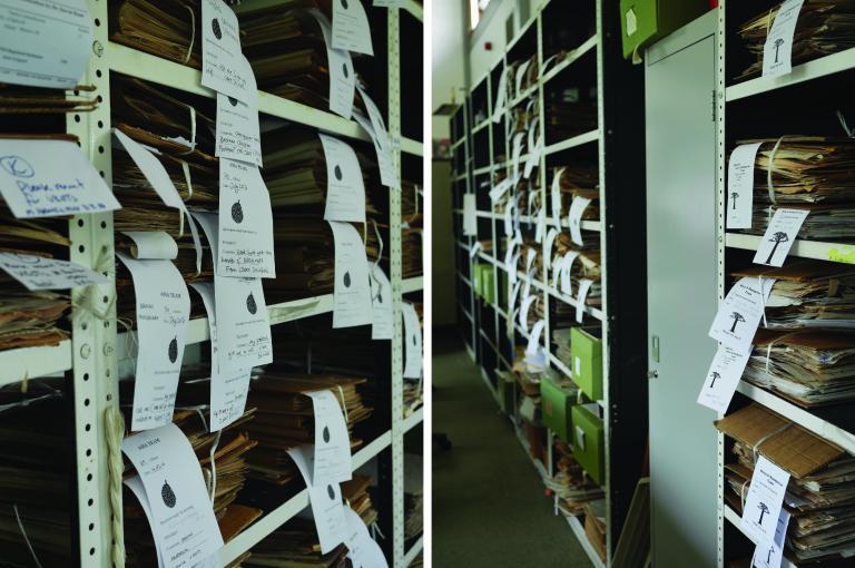 Image showing specimen bundles awaiting mounting by the Specimen Preparation Team