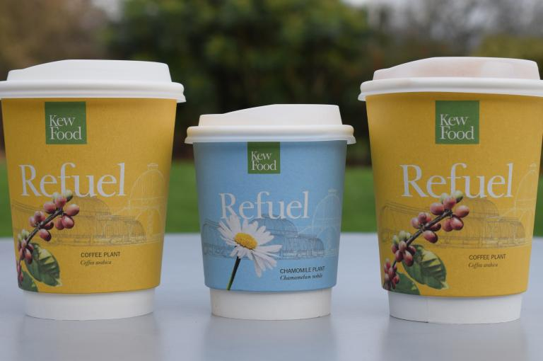 Compostable coffee cups at Kew