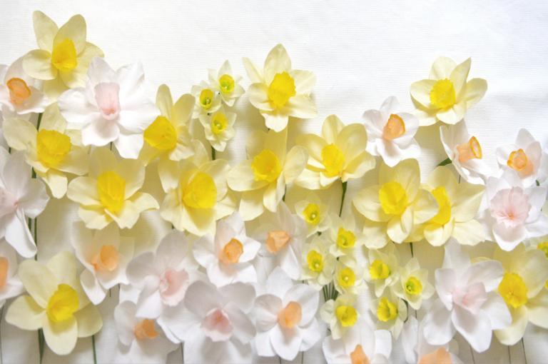 Paper flowers course, Nikita Crocker