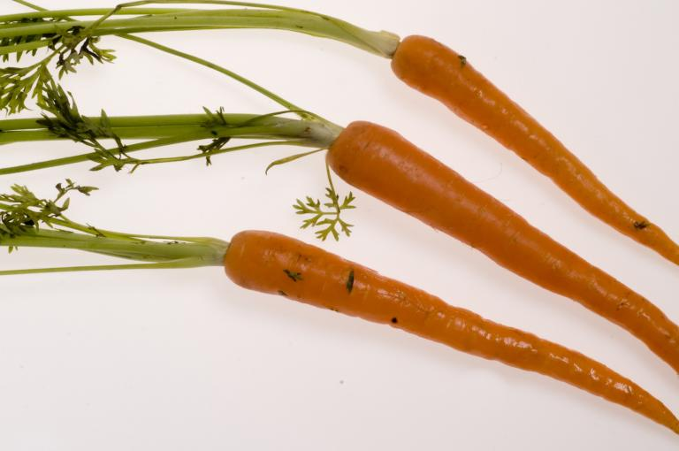 Carrots, AMcRobb, RGB Kew
