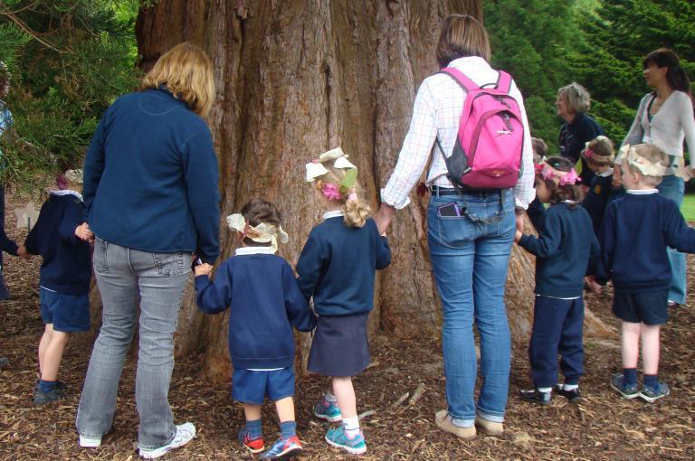 Treemendous trees