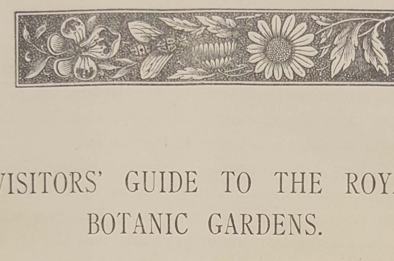 Trinidad botanic garden blog