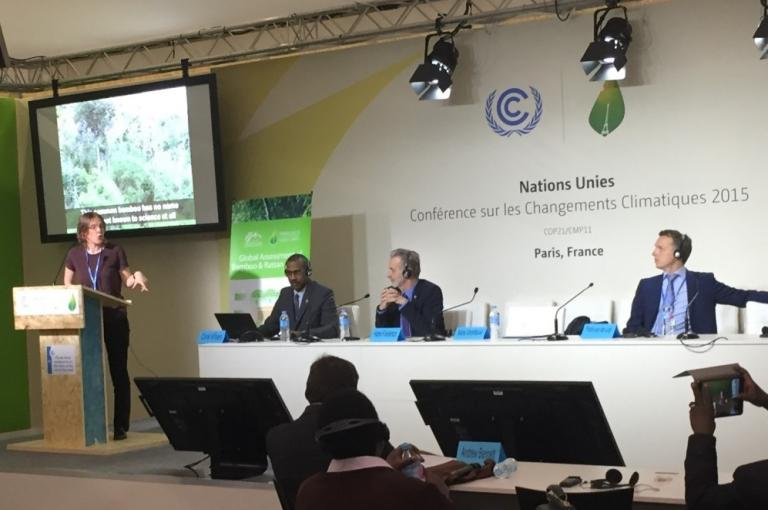 Dr. Maria Vorontsova (RBG Kew) speaking about the important of taxonomic checklists for the integration of bamboo and rattan into climate action at the Global Assessment of Bamboo and Rattan Programme side event (Photo: O. Frith)