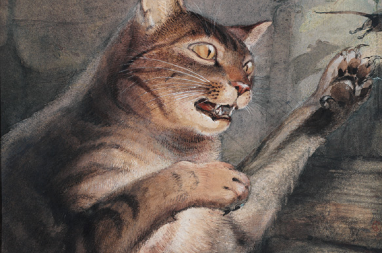 Photo of a painting of a tabby-cat hunting a mouse. Walter Hood Fitch, 1846. From Kew's illustrations collection.