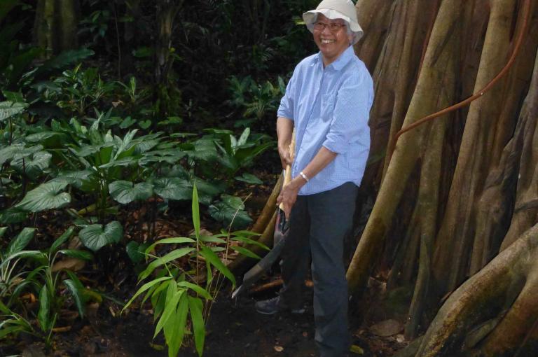 Soejatmi planting Soejatmia bamboo