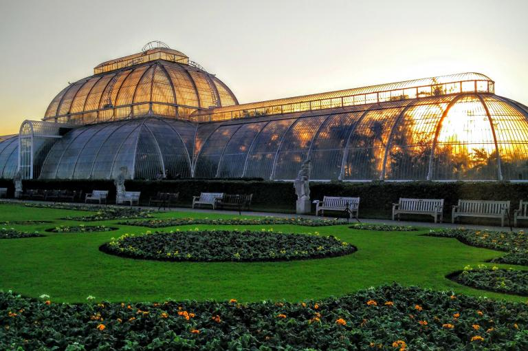 Sunset behind Palm House
