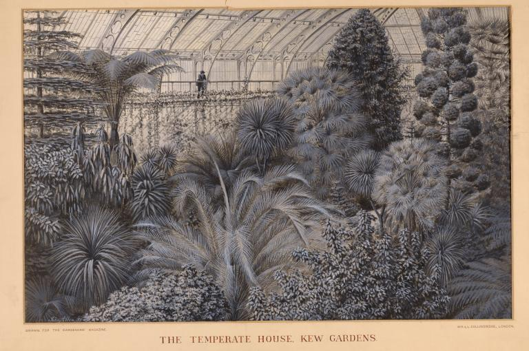 Contemporary view of the Temperate House