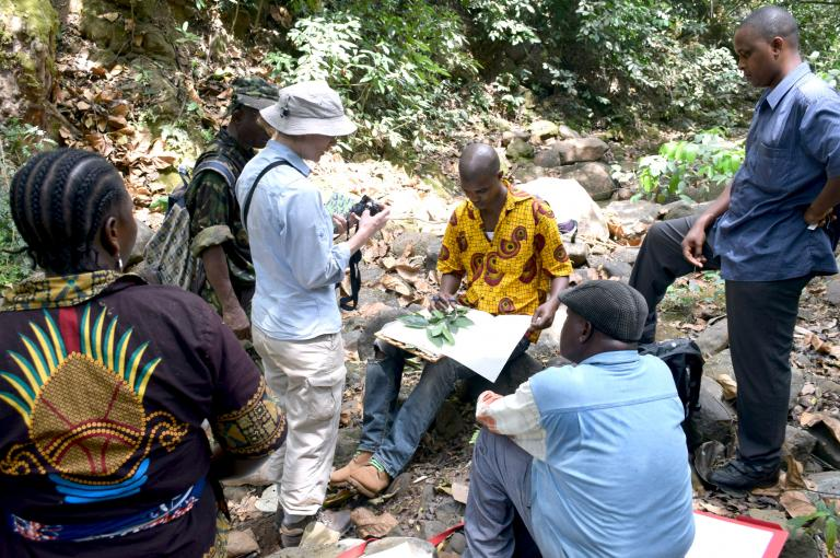 Charlotte teaching a group of Master's students to make a herbarium specimen (Photo: I. Larridon)