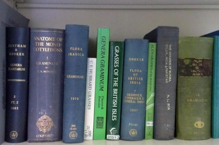 Image showing some of the reference publications on grasses written by scientists at Kew over the last 130 years.