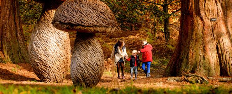 A family in woods at Wakehurst