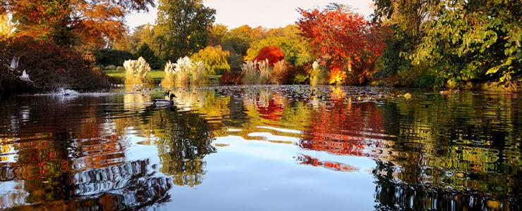 Wakehurst Lake in Autumn