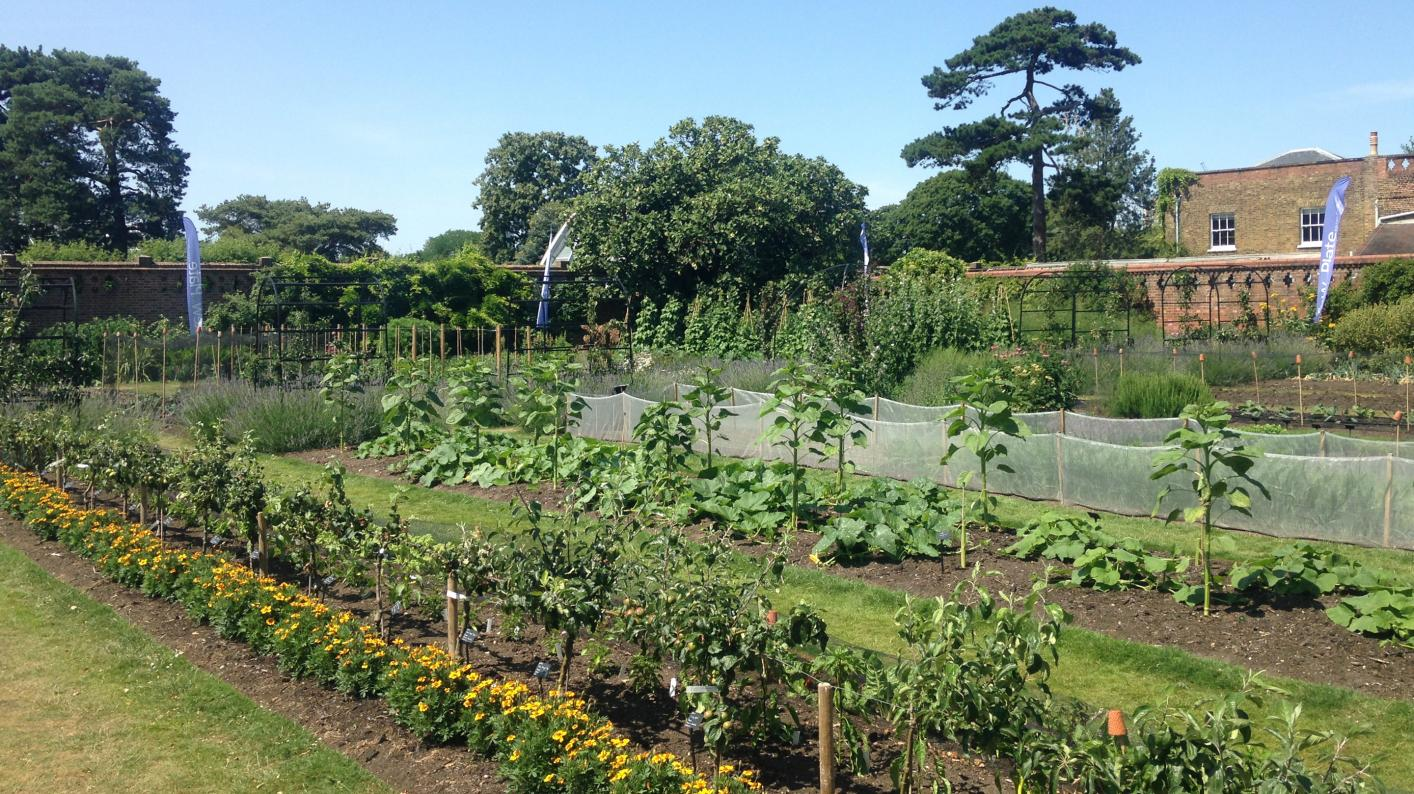 Kitchen Garden, RBG Kew