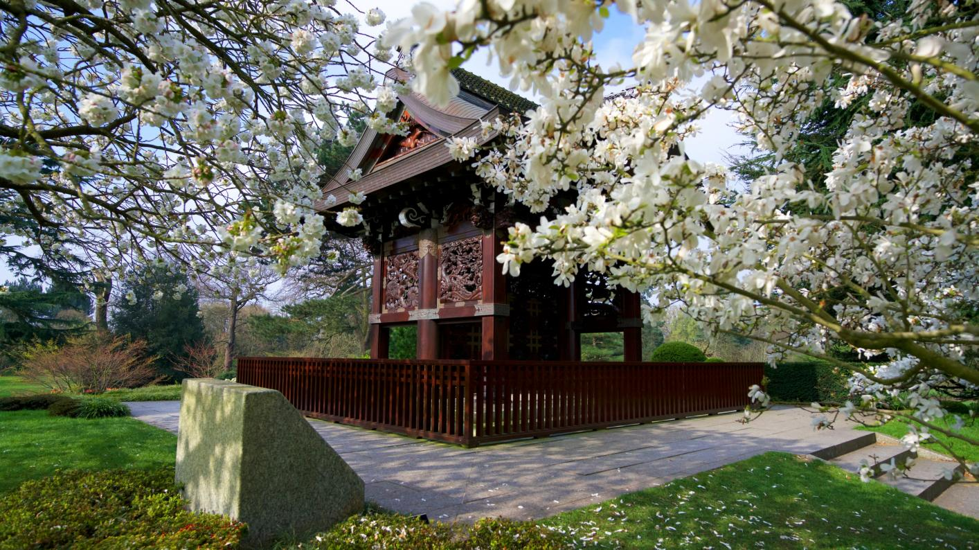 Japanese Gateway at Kew