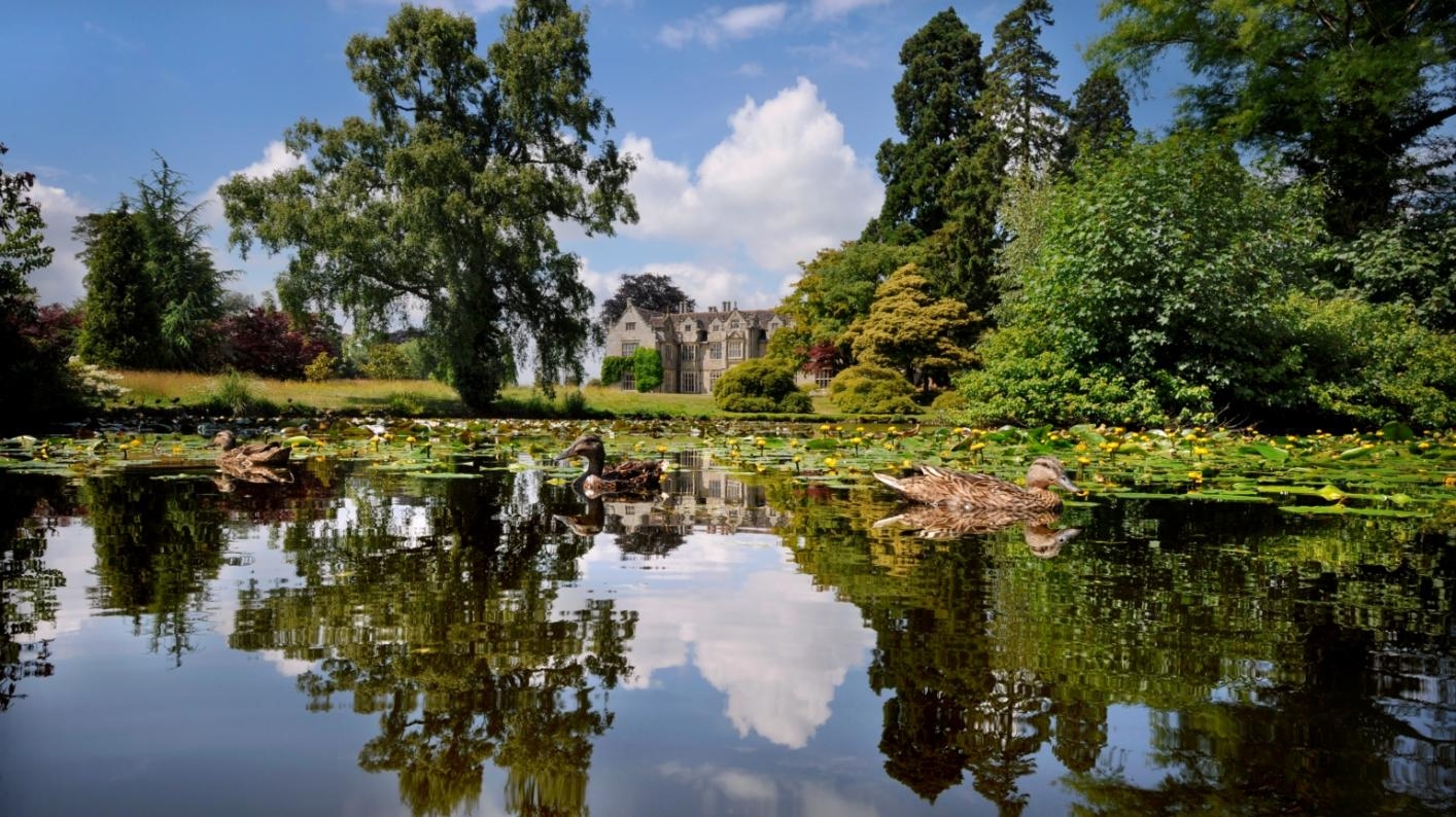 The Mansion pond at Wakehurst on a bright day
