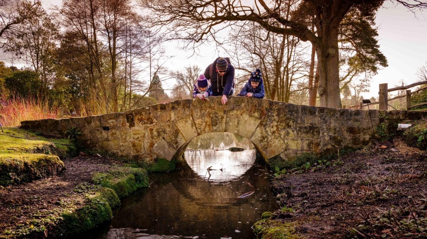 A family looking over the bridge in the Water Garden