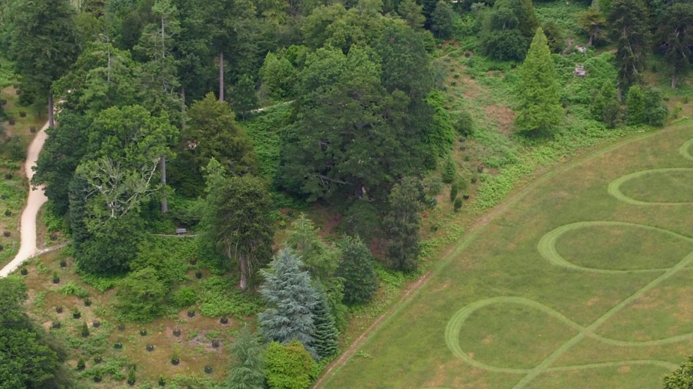 Aerial view of Bloomers Valley at Wakehurst