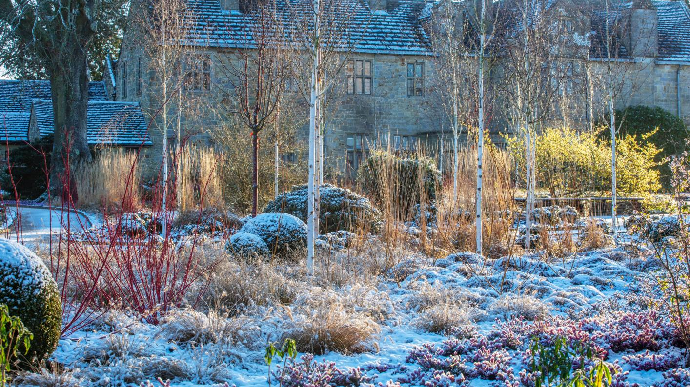 The Mansion Gardens in frost