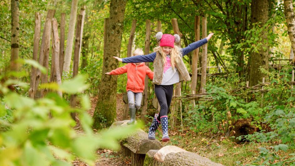 Children playing on a log trail in autumn