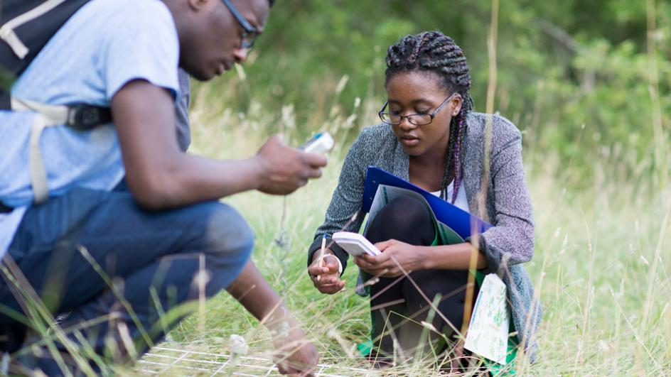 Students studying in the grasses