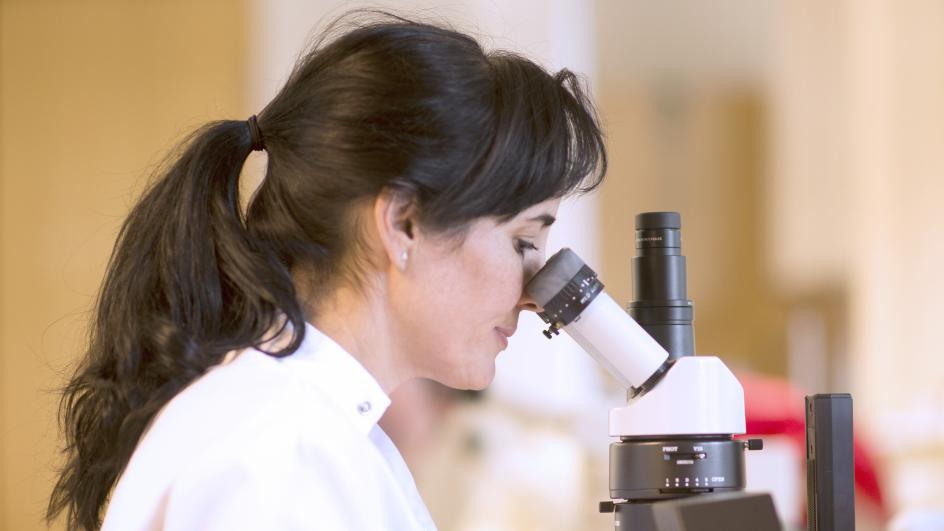 A scientist looks through a microscope