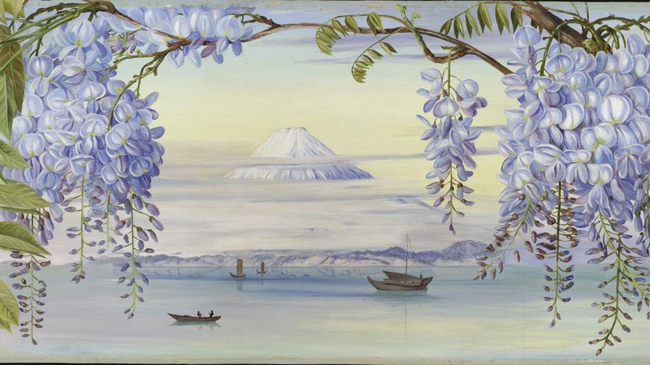 Painting of Mount Fujiyama in Japan by Marianne North