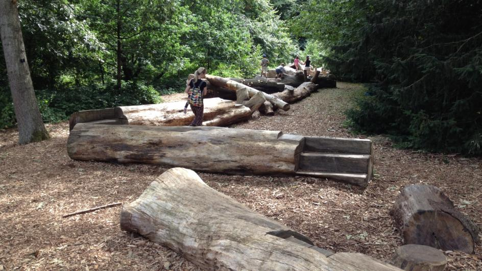 A log trail for kids to play on in the Natural Area