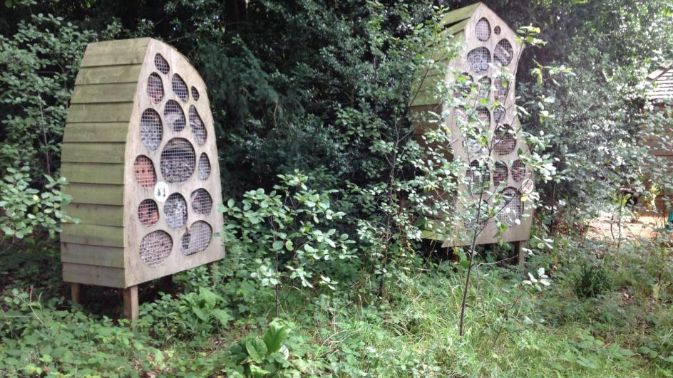 The Bug Hotel in the Natural Area