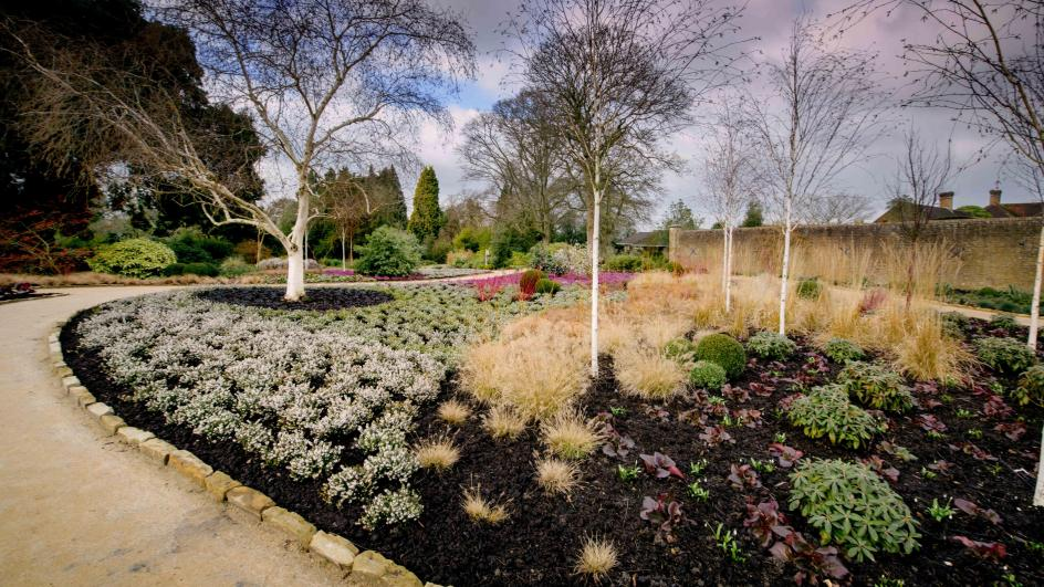Winter Garden, Wakehurst
