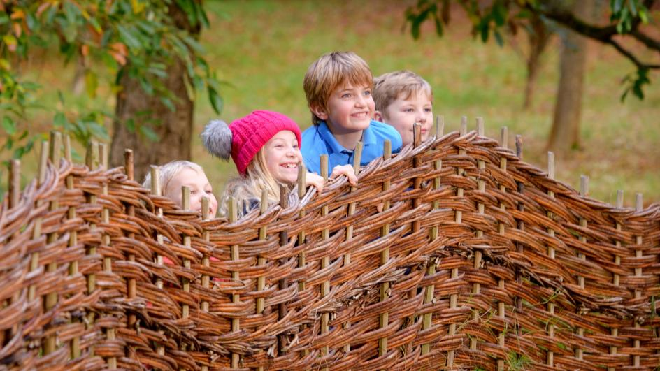 Children play at Wakehurst