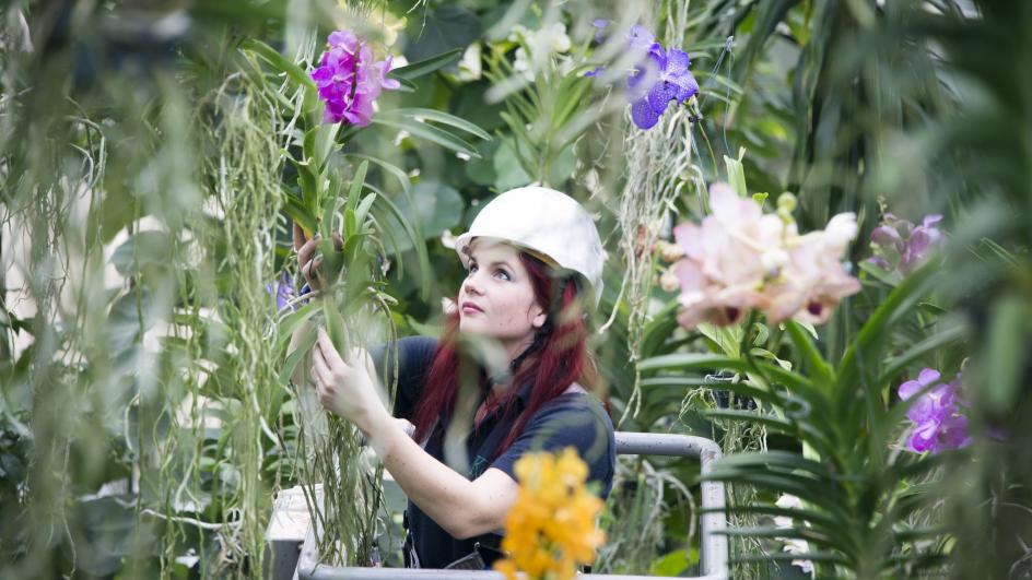 Elisa Biondi in Princess of Wales Conservatory
