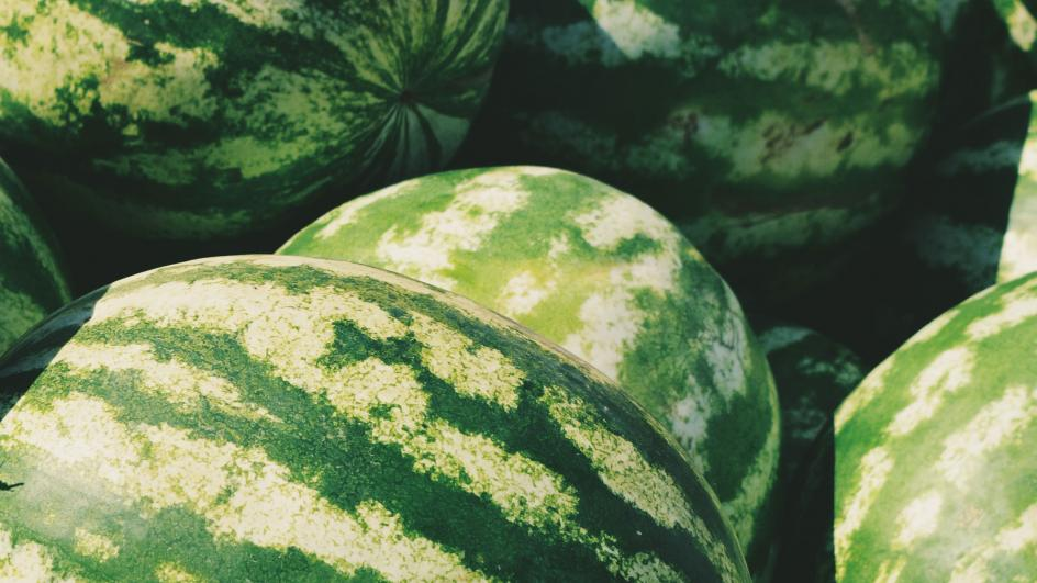 Green watermelons close up