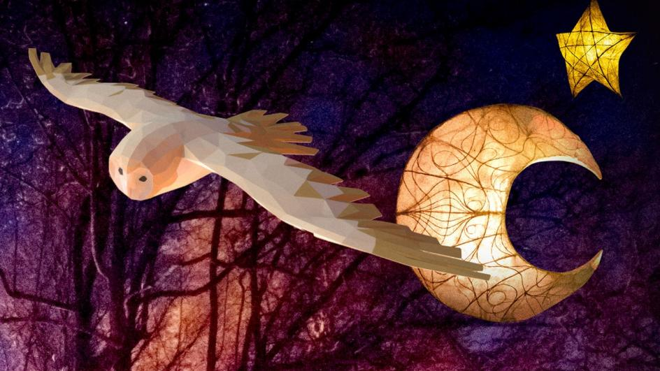 Majestic barn owl and moon and stars lanterns