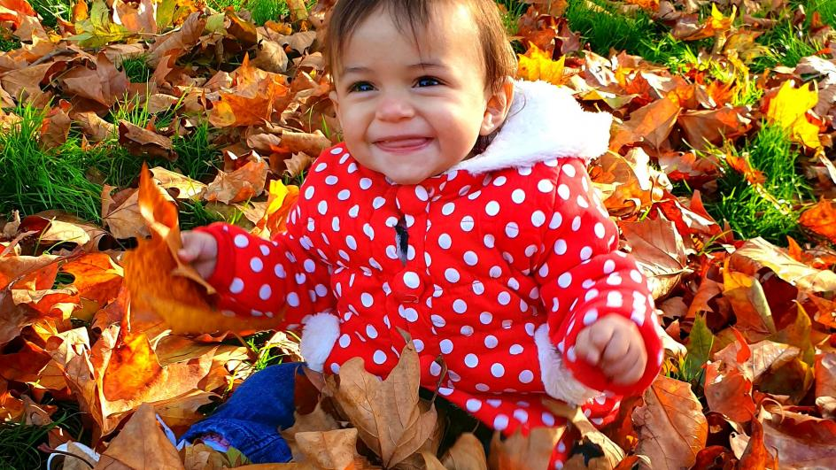 Young child playing in autumn leaves