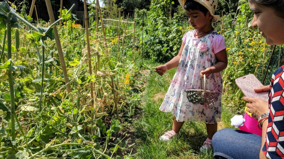 Child learning about the Kitchen Garden