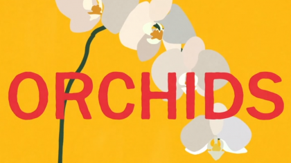 Copy 'Orchids' overlays an animated illustration of an orchid