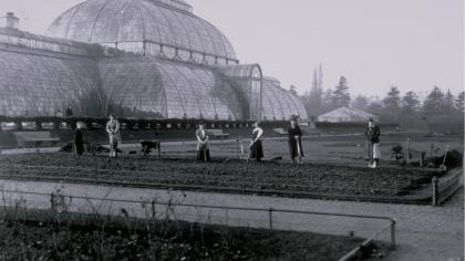 Women gardeners at Kew Gardens, 1915