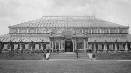 Temperate House in the 1890s