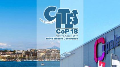 Photo of lake in Geneva with the CoP18 logo