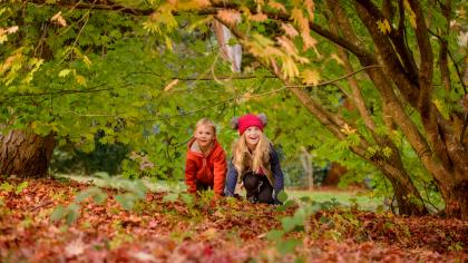 Children playing at Wakehurst in autumn