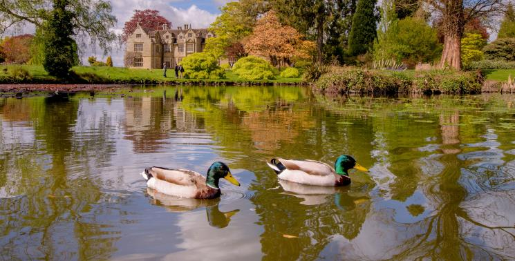 The Mansion in spring (Image: Jim Holden)