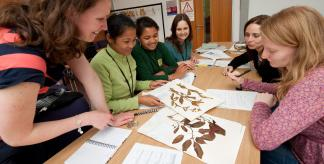 Identifying tropical plants