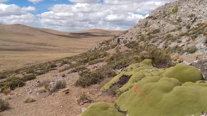 Limestone hills in Peru with large patch of green plants