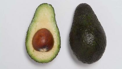 Pear-shaped fruit with dark green skin; greenish-yellow flesh; and a single, large, rounded seed in the centre.